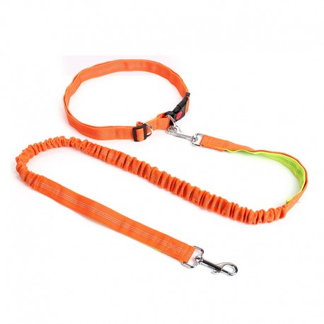 Hands Free Comfortable Running Dog Leash Thick Nylon Portable 2 Handles