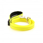 Illuminate Lighted Dog Leash Make Your Dog Safe at Night Walking