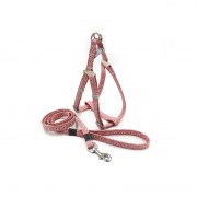 Bohemian style Dog Harness and Leash Set Colorful Designed for The Dog's Daily Walk