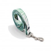 Personalized Best Dog Leash for Running Fit Large and Heavy Duty Dog