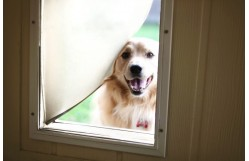 4 Easy Steps to Help You Install a Dog Door